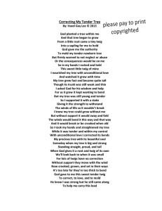 Correcting My Tender Tree Poem